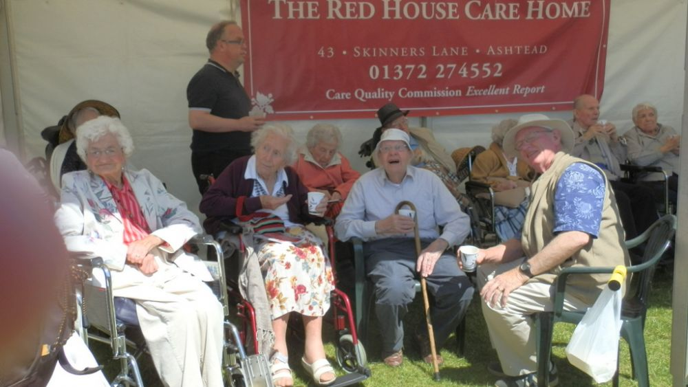 Ashtead Village Day 2013